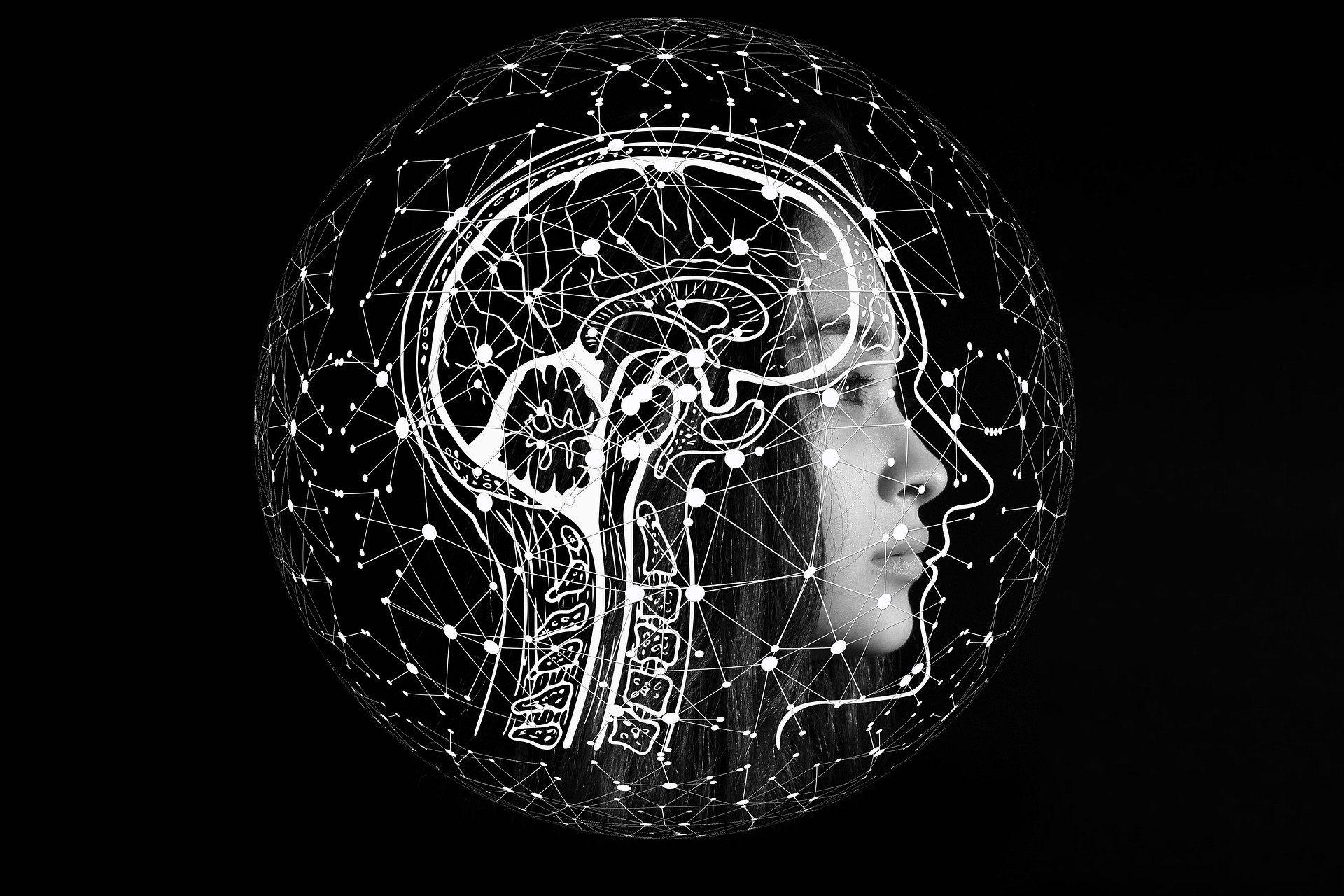 Recréer un cerveau humain, un objectif insensé - Gerd Altmann sur Pixabay